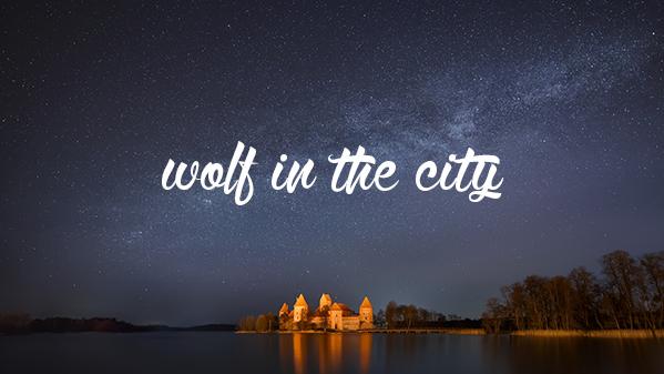 wolfinthecity
