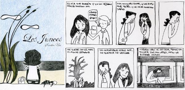 juncos03