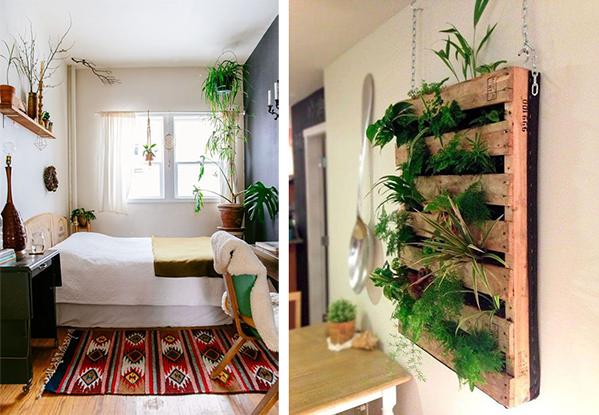 Ideas para decorar habitaciones peque as umidori estudio - Plantas para habitacion ...