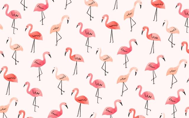 JenBPeters_Flamingos